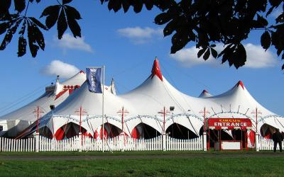 Internationale Dag van het Circus